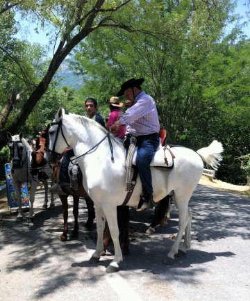 Romeria - horseback riders