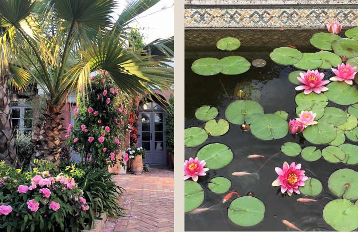 The garden at Casa Mosaica